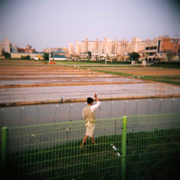 Korea Rice Institute
